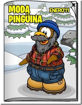moda-pinguina
